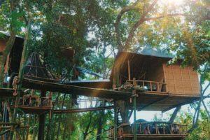 Rumah Pohon Temega, Bali